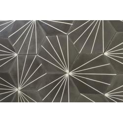 Carreau ciment en tomette dandelion 20x17cm - Ref.8500-11 - 0.307m² Carreaux ciment véritables