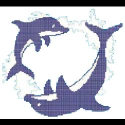 Décor piscine ronde des dauphins 300x300 cm - unité Onix