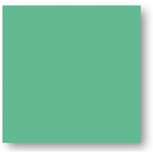 Faience colorée vert foncé Carpio Verde brillant ou mat 20x20 cm -   - Echantillon - zoom