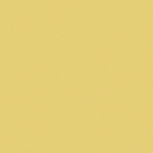 Carrelage uni 20x20 cm CEDRO MATT -   - Echantillon CE.SI