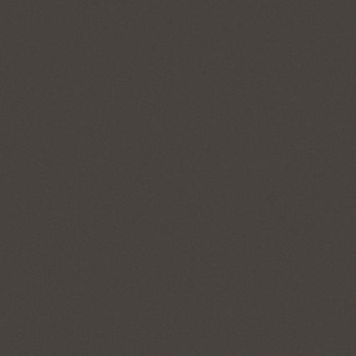Carrelage uni noir 20x20 cm FUMO MATT - - Echantillon Vives Azulejos y Gres