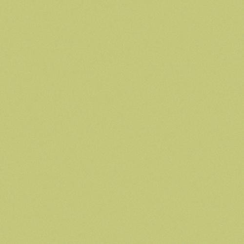 Carrelage uni 20x20 cm vert olive MELA MATT -   - Echantillon CE.SI
