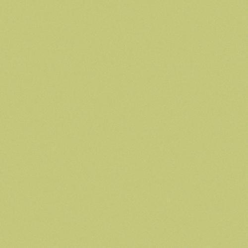 Carrelage uni 20x20 cm vert olive MELA MATT -   - Echantillon - zoom