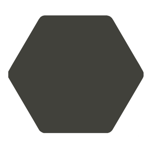 Carrelage tomette anthracite 25x29 cm TOSCANA MARENGO -   - Echantillon - zoom