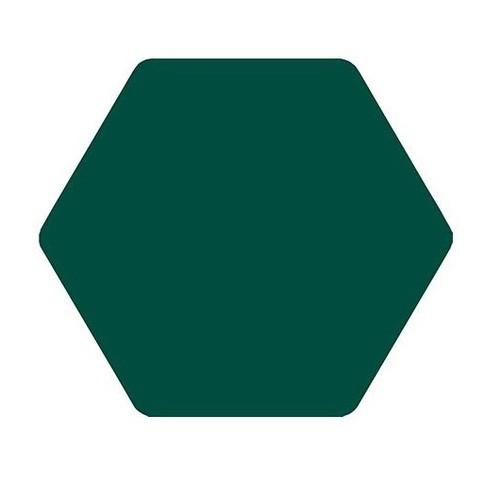 Carrelage tomette vert 25x29 TOSCANA VERDE-   - Echantillon - zoom