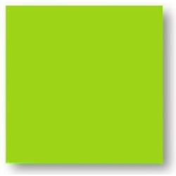Faience colorée vert Carpio Menta brillant 20x20 cm - 1m² Ribesalbes