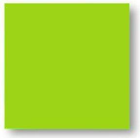 Faience colorée vert Carpio Menta brillant 20x20 cm - 1m² - zoom