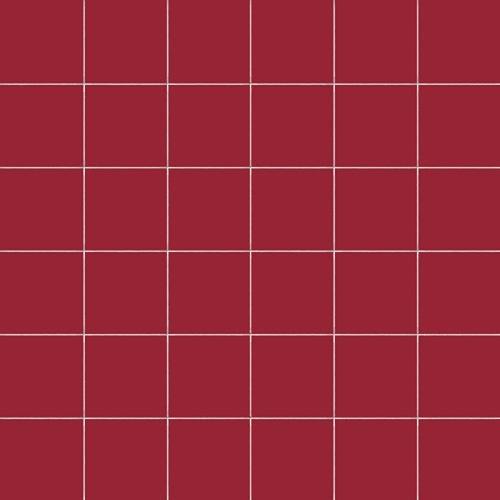 Carrelage uni 5x5 cm RUBINO MATT sur trame - 1m² - zoom