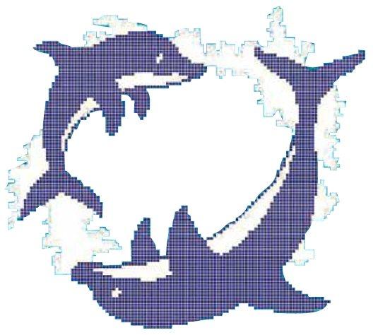 Décor piscine ronde des dauphins 300x300 cm - unité - zoom