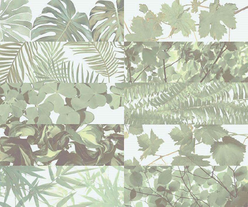 Faience murale brillante décor mural TROPICAL MIX JUNGLE 10x30 cm - 1,02m² - zoom
