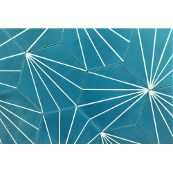 Carreau ciment en tomette dandelion 20x17cm - Ref.8500-10 - 0.307m² Carreaux ciment véritables