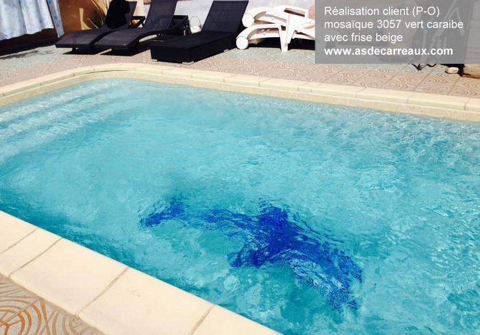 Design piscine mosaique verte pau 38 piscine intex for Piscine verte